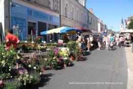 Chalonnes-sur-Loire (49)- Marché (Edition à Tirage Limité) - Chalonnes Sur Loire
