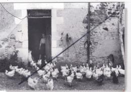 """Les Poujards, Moulins Sur Ouanne (89) Photo Jacques Faujour. Série Identités De La France"""" Hommage à F.Braudel - Francia"""