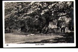 Ealing Green - Middlesex