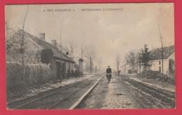 "Zevendonk ( Turnhout ) "" Het Zwaantje""  - 1908 ( Voir Verso ) - Turnhout"