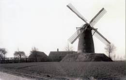MASSENHOVEN Bij Zandhoven (Antw.) - Molen/moulin - De Verdwenen Stenen Bergmolen Ca. 1925. Maxikaart ~ TOP! - Zandhoven