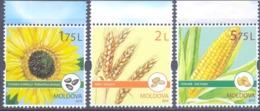 2019. Moldova, Agriculture Of Moldova, Field Crops, 3v, Mint/** - Moldawien (Moldau)