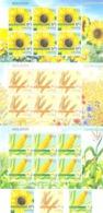 2019. Moldova, Agriculture Of Moldova, Field Crops, 3v + 3 Sheetlets,  Mint/** - Moldawien (Moldau)