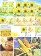 2019. Moldova, Agriculture Of Moldova, Field Crops, 3v + 3 Sheetlets + FDC + 3 Maxicards,  Mint/** - Moldawien (Moldau)