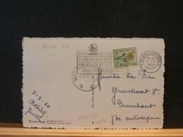 A10/380   CP BELGE  1950 - Belgium