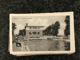 Espierres - Bassin De Natation  ( Spierre-Helkijn ) - Edit. Seynaeve - Swimming Pool Zwembad Schwimbad - Spiere-Helkijn