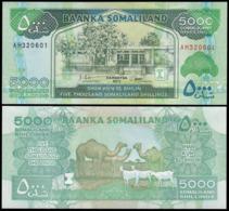 SOMALILAND - 5000 SHILLINGS - 2011 - UNC - Somalië