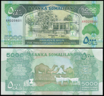 SOMALILAND - 5000 SHILLINGS - 2011 - UNC - Somalie