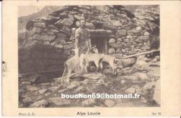 Suisse - Valais - Alpe Louvie Ziege Goat Chevre - VS Wallis