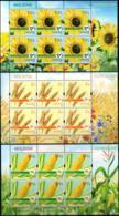 "Moldova 2019 ""Field Crops.""3 Sheets Quality:100% - Moldawien (Moldau)"