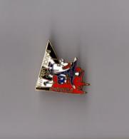 Pin's Police Urbaine De Chartres (EGF Doré) Hauteur: 2,5 Cm - Police