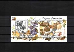Romania 1994 Mushrooms Block Fine Used - Pilze