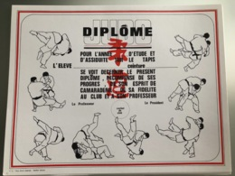 Diplôme Judo FFJDA - Martial Arts