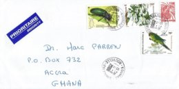 Nouvelle Caledonie 2006 Koumac Beetle Insect New Caledonian Parakeet Endemic Liana Oxera Brevicalyx Cover - Brieven En Documenten