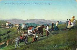 Pays Div -ref V231- Italie - Italia - Italy - Verso La Vetta Del Monte Antola - Apennini Liguri - - Italie