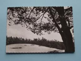 """"""" Hoge MOUW """" KASTERLEE ( Uitg. Copyright CASH - Nr. 7 ) Anno 1969 ( Zie/voir Photo ) ! - Kasterlee"""