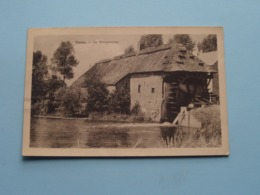 TIELEN - De WATERMOLEN ( Uitg. Peeters-Claessen ) Anno 1956 ( Zie/voir Photo ) Gekreukt > Zie Foto's ! - Kasterlee