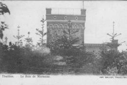 Thuillies.  Le Bois De Mertenne.  Scan - Belgium