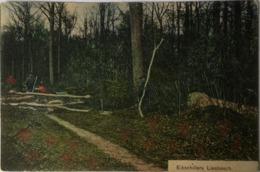 Liesbosch Bij Breda // Eikschillers 1908 Uitg. A. Van Erp - Breda