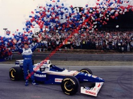 Damon Hill World Champion 1996 Williams-Renault - Original Press Photo - Format 24x17,5cm - Automobile - F1