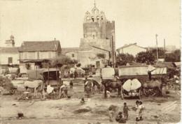 13 Saintes Maries De La Mer (camargue) 25 Mai Campement Des Bohémiens  Photo George - Saintes Maries De La Mer
