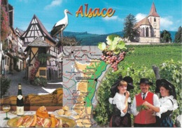 Cartes Géographiques - Alsace - La Route Des Vins - 1 Timbre Philatélique Au Verso - Voir Scan - Cpm - écrite - - Landkaarten