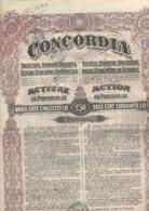 LOT DE 9 ACTIONS CONCORDIA - SOCIETE ANONYME ROUMAINE POUR L'INDUSTRIE DU PETROLE. 1923 - Pétrole