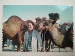 MARCHÉ AUX CHAMEAUX À MABEUL EN TUNISIE AFRIQUE Personnes Anonymes 9 PHOTOS ORIGINALES ANNÉE 1967 - Lieux