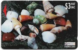 Fiji - Sea Shells Of Fiji - 25FJB - 1998, 50.000ex, Used - Fiji