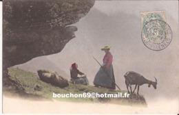 Suisse - Valais - Le Transport En Haute Montagne  Chevre Ziege Goat - VS Wallis