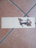 Donnine Woman MIGNONETTE  Coppia Cavallo Cane Horse Dog - Couples