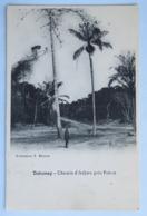 C. P. A. : BENIN, Dahomey : Chemin D' ADJARA Près PAHOU - Benin