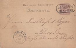 DR Ganzsache Nachv. Sachsenstempel Mügeln Bei Oschatz 29.9.80 - Briefe U. Dokumente