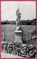 CPSM 71 LESSARD-en-BRESSE - Grotte Des Libeaux - Statue De Saint-Michel * St - Sonstige Gemeinden