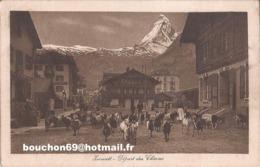 Suisse - Valais - Zermatt - Départ De Chèvres Chevre Ziege Goat - VS Valais