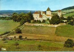 71 - CHÂTEAU DE PIERRECLOS - Francia