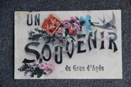 Un Souvenir Du GRAU D'AGDE - Agde