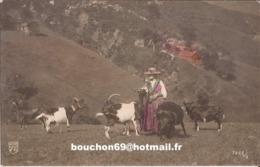 Suisse - Valais - Sans Légende Ed Nam Ziege Goat - VS Wallis