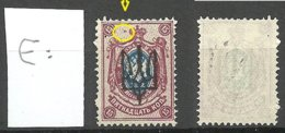 Ukraine Ukraina 1918 Michel 16 Printing ERROR Abart (*) - Ukraine