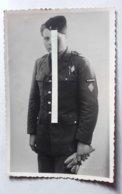 1945 Cuirassiés 11 Eme Régiment 1 Ere Division Français Libre Vercors Glières Croix De Lorraine Insigne Ww2 1939-1945 - Guerra, Militari