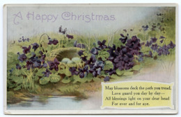 A HAPPY CHRISTMAS - VOILETS AND EGGS IN BIRD'S NEST (TUCKS) / ADDRESS - BIRMINGHAM, LADYWOOD, ST VINCENT STREET - Christmas