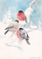 Bird - Birds - Oiseau - Vogel - Uccello - Pássaro - Bullfinches In Winter Landscape - Red Cross 1990 - Double Card - Christmas
