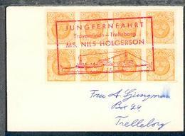 Cachet JUNGFERNFAHRT MS NILS HOLGERSSON Travemünde-Trelleborg Als Entwerter  - Stamps