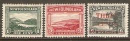NEWFOUNDLAND 1923 1c, 2c 1929 3c On 6c SG 149, 150, 188 MOUNTED MINT Cat £7 - Neufundland