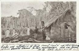 Nlles Hebrides Plantation D' Ignames Chez Un Colon  Totem Sculpté - Vanuatu