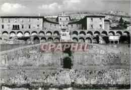 CPM Palestrina Museo Archeologico E Tempio Della Dea Fortuna Primigenta Rampa Centrale - Roma (Rome)