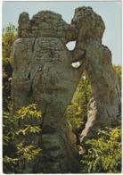 Environs De Ruoms - Bois De Païolive 'L'Ours Et Le Lion' - (Ardèche) - Ruoms