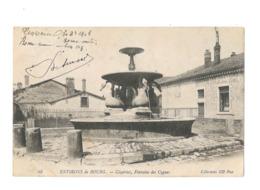 Environs De Bourg - Cézeiriat , Fontaine Des Cygnes - 328 - Altri Comuni