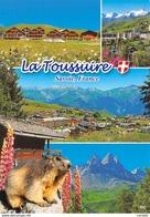 73-LA TOUSSUIRE-N°3716-D/0355 - France