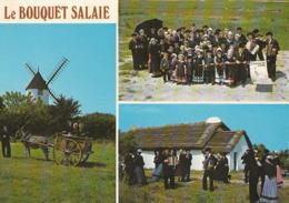 """BEAUVOIR-sur-MER. - Groupe Maraîchin """" Le Bouquet SalaÎe"""".  CPM - Beauvoir Sur Mer"""